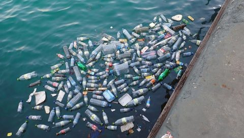 The dangers of plastic to the environment